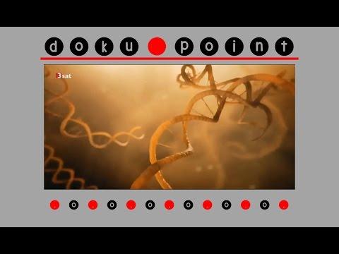 Doku (2016) - Unsere Evolution: Woher wir kommen - HD/HQ
