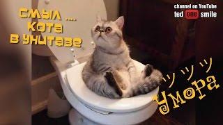 Смыл кота в унитазе СМОТРЕТЬ ВИДЕО ПРИКОЛЫ