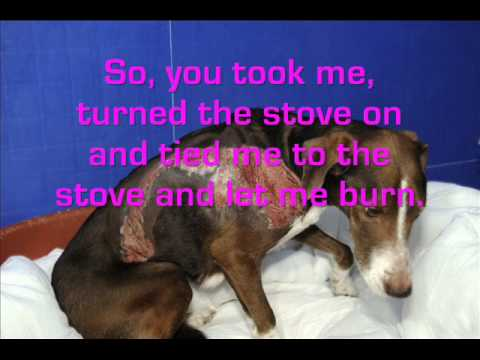 dog abuse stories
