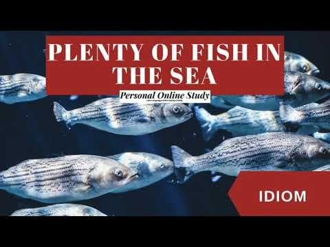 Plenty Of Fish In The Sea Meaning | Learn English Idioms And Phrases