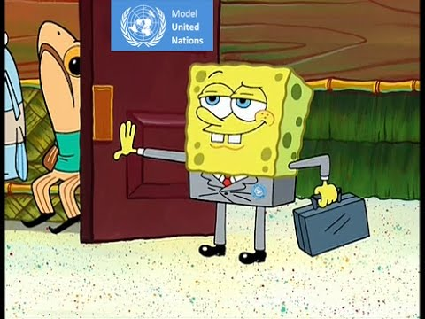 Model UN Position Papers in a Nutshell