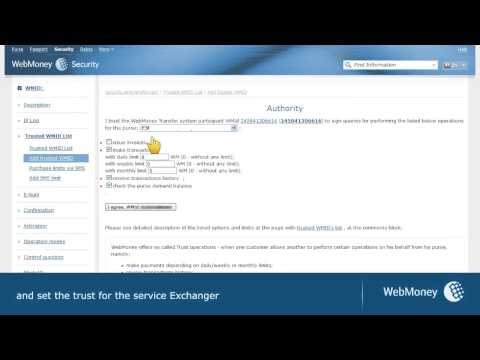 WebMoney Paypal Exchanger