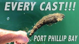Port Phillip Bay Flathead Fishing - featuring Land Fish TV