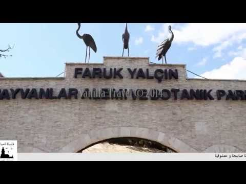 SAPANCA LAKE & MASUKIYE & DARICA ZOO PARK TOURS from Istanbul