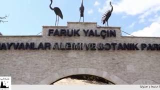 SAPANCA LAKE & MASUKIYE & DARICA ZOO PARK TOURS from Istanbul