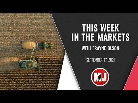 Weekly Market Analysis | Frayne Olson | September 17, 2021