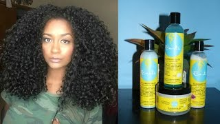 Curly Hair Routine With Frizz Free CURLS | Blueberry Bliss