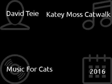 David Teie - Katey Moss Catwalk