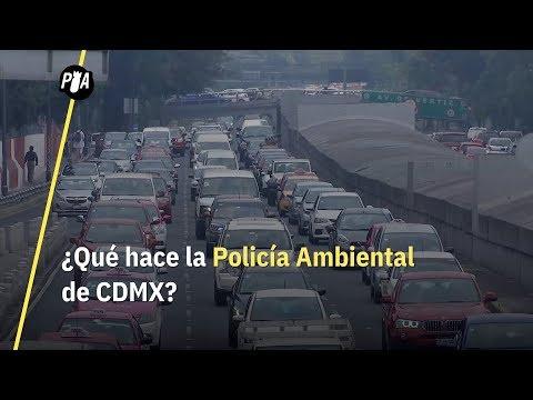 ¿Qué hace la Patrulla Ambiental de la CDMX?