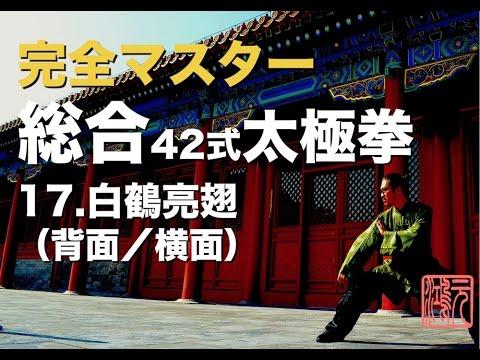総合42式太極拳 完全マスター17.白鶴亮翅(背面/横面)中村元鴻