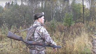 Осенняя охота на вальдшнепа с легавой собакой