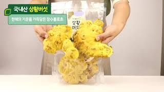 [자연닮음] 장수 상황버섯