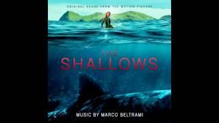 The Shallows OST - Nancy's Speech