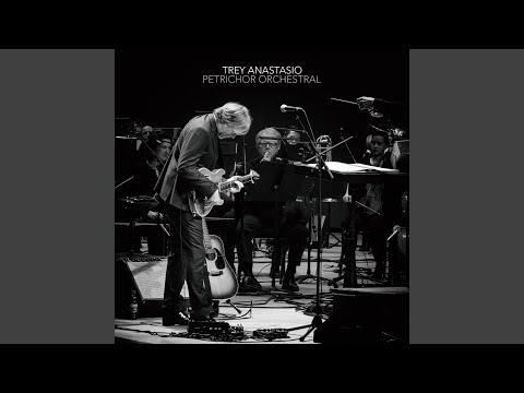Petrichor Orchestral