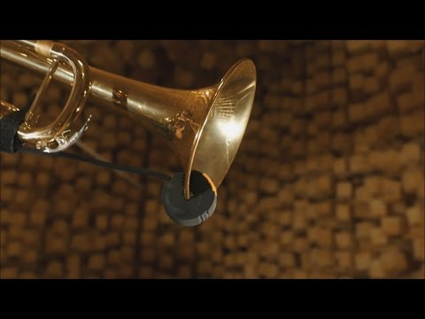 REMIC W3000 microphone | for brass & woodwind