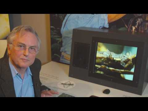 Richard Dawkins: Hawaii as a Nursery of Evolution - Nebraska Vignettes #6