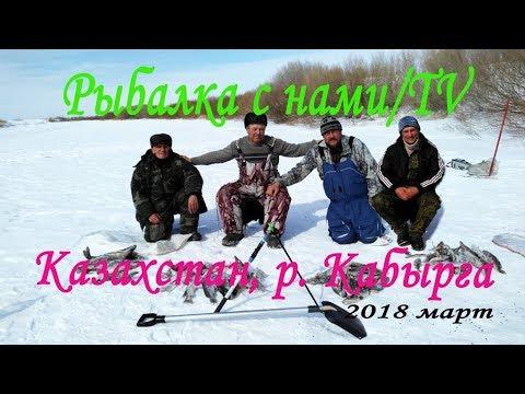 Рыбалка в Казахстане Тургай март 2018 - YouTube