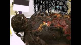 HYPEREMESIS - HYPOCRISY (ENEMY SOIL)