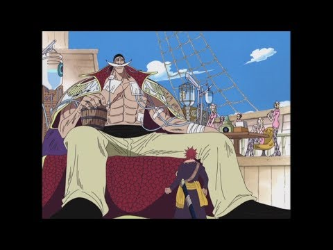 Whitebeard First Appearance English Dubbed
