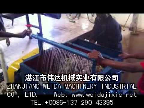 Natural Rubber Cleaning/Washing Machine