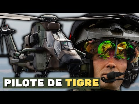 [Y A QUOI DANS TON SAC ?] - PILOTE DE TIGRE