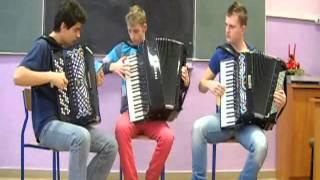 Stevie Wonder  - I Just Call To Say I Love You (Crazy Accordion Trio Cover)