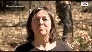 Me vuelvo al pueblo (04/05/2015)Fuentidueña, Segovia y Valdesangil, Salamanca