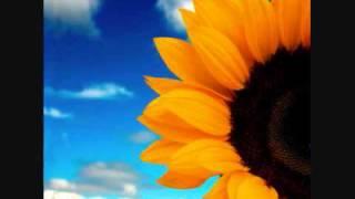 Photosynthesis Rap Video