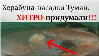 Взорвавшая интернет рыболовная насадка 2020 Насадка Карп Карась насадка Прикормка для плотвы