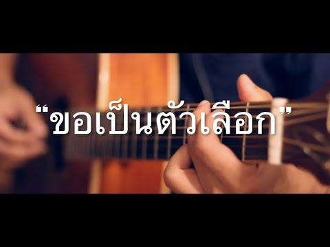 ขอเป็นตัวเลือก - กะลา Fingerstyle Guitar Cover (TAB)