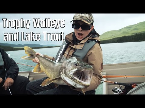 Trophy Walleye And Lake Trout In BC | Fish'n Canada