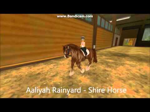 Star stable - Shire Horse - animations