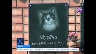 Кладбище домашних животных Х версии