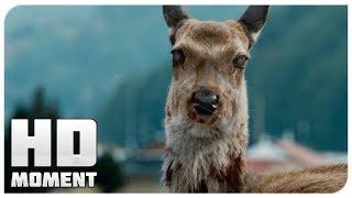Начало эпидемии - Поезд в Пусан (2016) - Момент из фильма