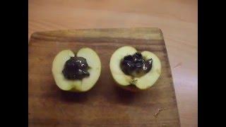 Рождественский десерт: запеченые яблоки с корицей