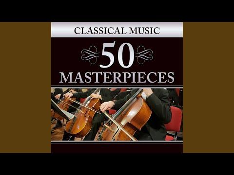 """Symphony No. 5 In C Minor, Op. 67 """"Fate"""": Allegro Con Brio (Excerpt)"""