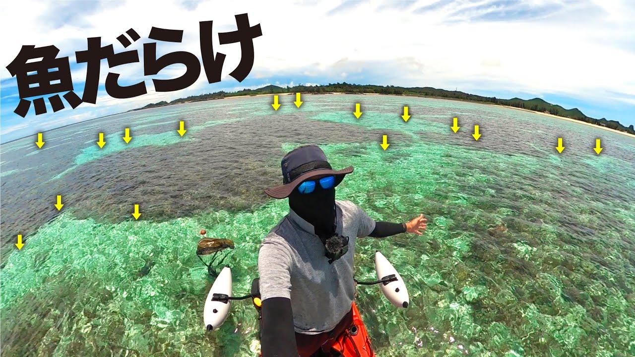 ミニカヤックで珊瑚畑の上から釣りしてみたら…入れ食い!!【沖縄カヤック釣り】