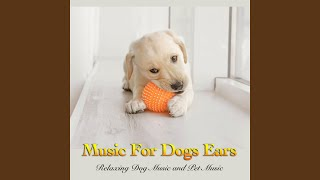 Soothing Music For Dogs Ears