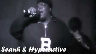 "2Pac - ""Show A Thug Some Love"" Ft. Big Pun & Notorious B.I.G (Seanh & Hyperactive Remix)"
