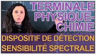 Dispositif de détection (Photodiode) : Sensibilité spectrale - Physique - Terminale - Les Bons Profs