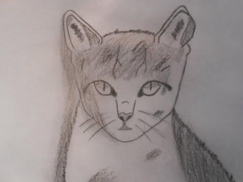 Dessiner un chat facile youtube - Chat facile a dessiner ...