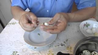 Как очистить перепелиное яйцо