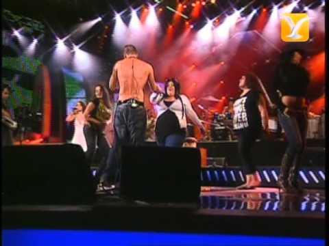 Calle 13, Se Vale To To - Hormiga Brava, Festival de Viña 2008