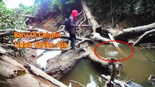 FISHING ADVENTURE II Ga Pernah Bosen Kalo Mancing Sambil Berpetualang ke Hutan