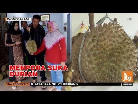 WOW!! MENPORA Berburu Durian Wonosalam Yang Manis Legit