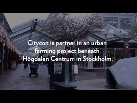 Urban underground farming in Stockholm
