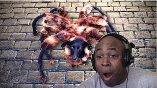 BHD Reacts To Giant Mutant Spider Dog