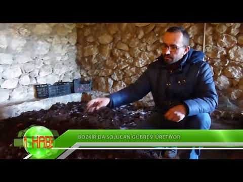 Bozkır'da solucan gübresi üretiyor