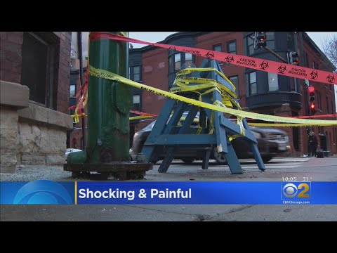 Lance Houston - Dogs Suffer Painful Shocks from Electrified Manhole Cover in Chicago