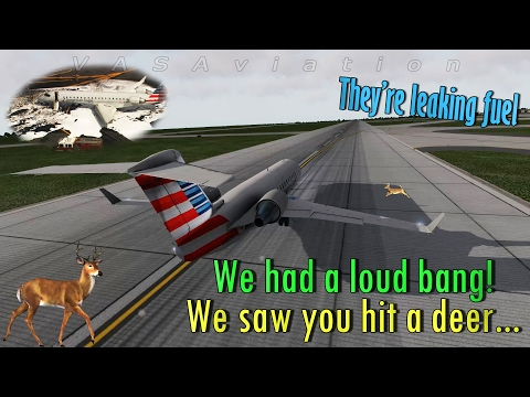 [REAL ATC] American Eagle HITS A DEER on takeoff | 3D visuals